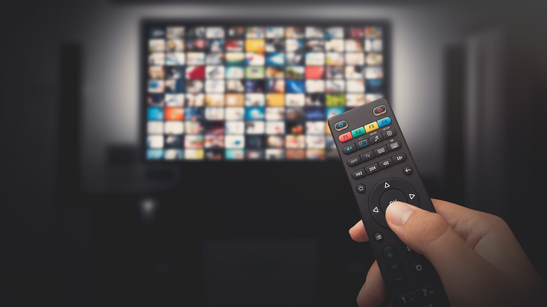 A person holds tv remote