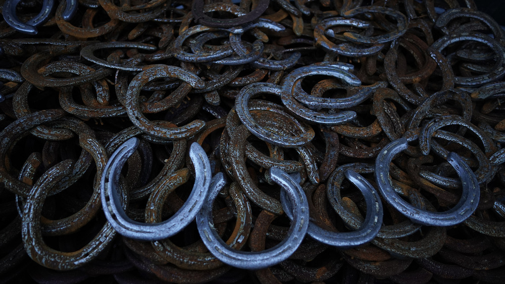 Blue and rusted horseshoes