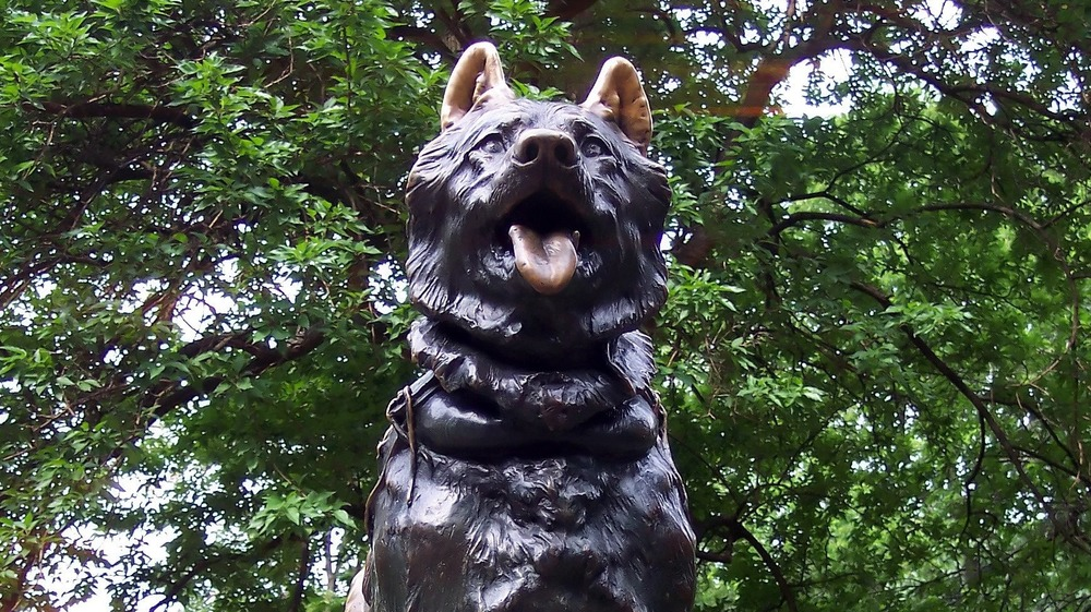 Balto statue in Central Park, surrounded by trees