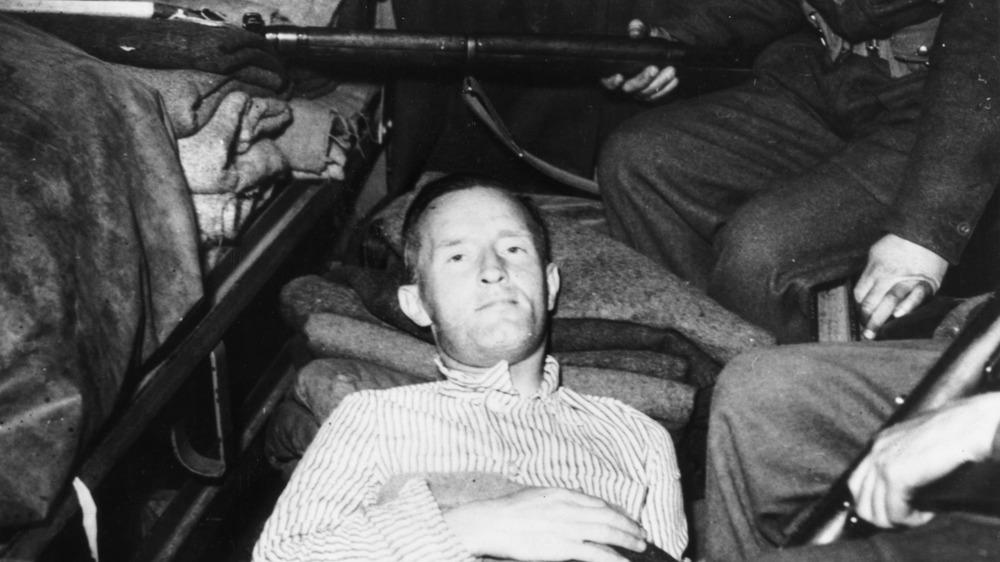 William Joyce, shot and captured