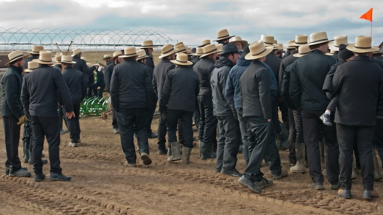 Group of Amish men