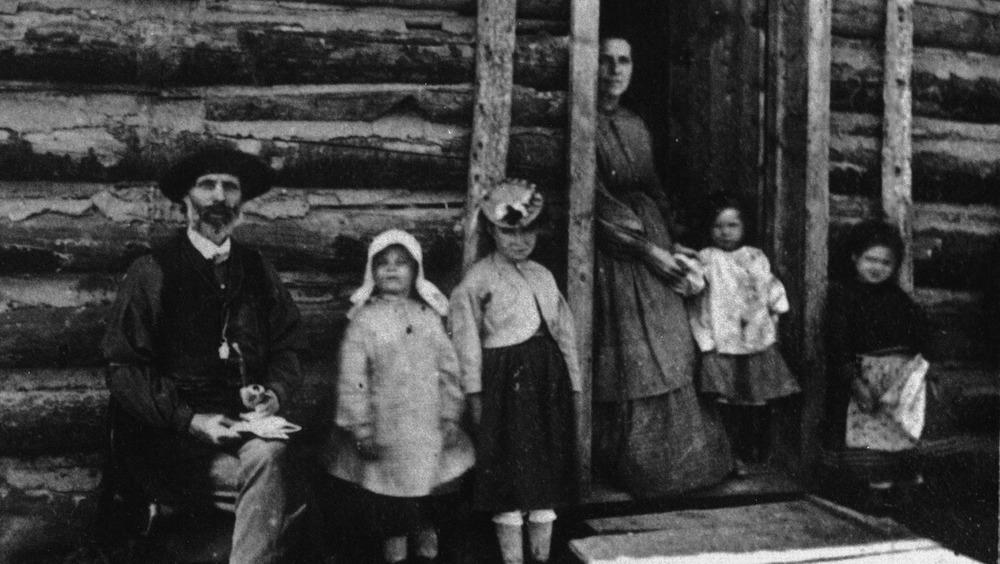 Log cabin family
