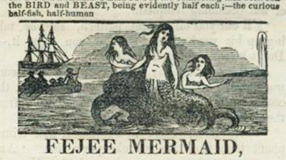 feejee mermaid ad
