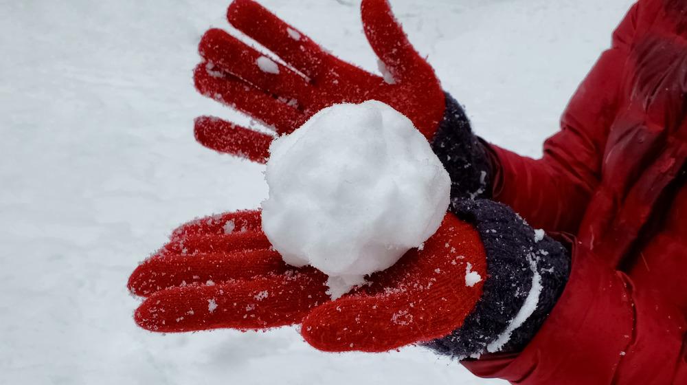 real or fake snowball