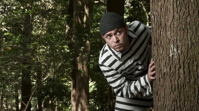 Man in prison uniform hiding in the woods