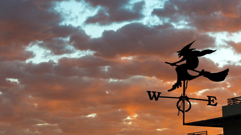 Witch wind vane
