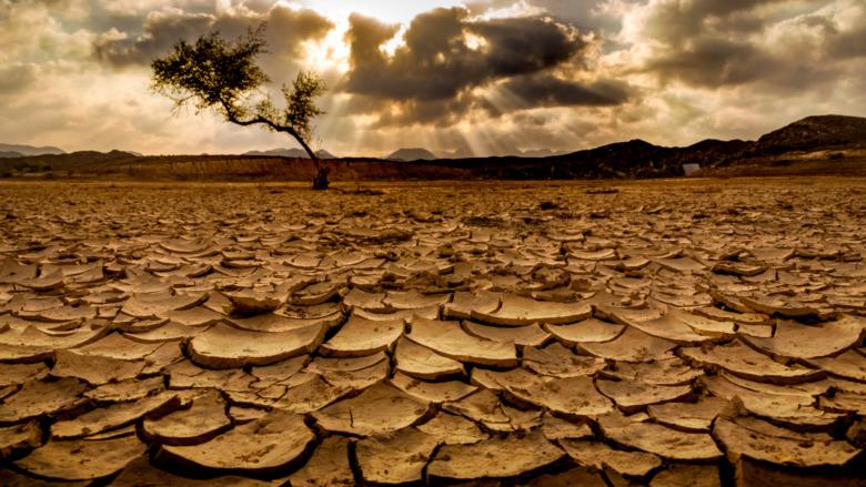 Dry, barren ground