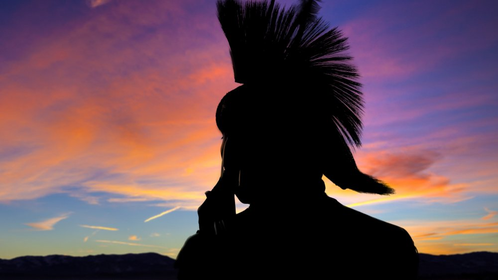 A representational image of a native American Indian tribe member