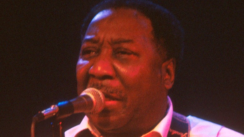 Muddy Waters performs circa 1977