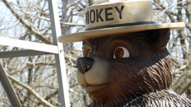 Close up of Smokey Bear statue