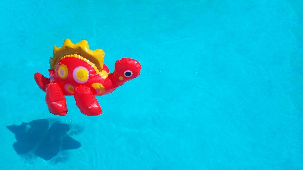 Dino floatie