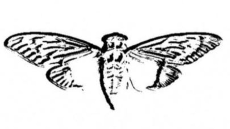 Logo of Cicada 3301