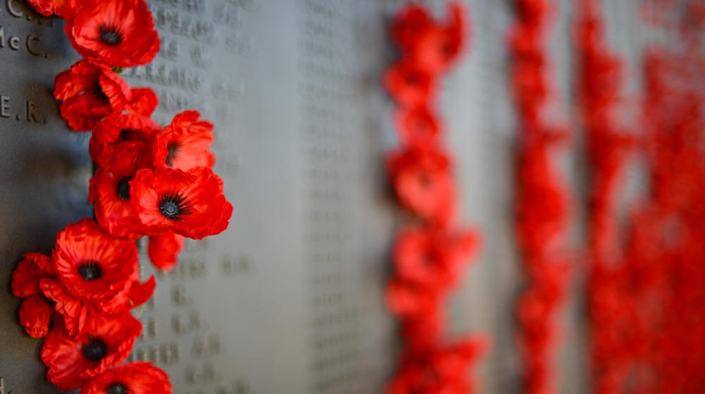 Flowers on Vietnam Veterans Memorial