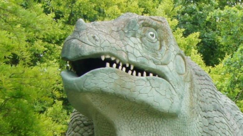Tyrannosaurus rex skull on display