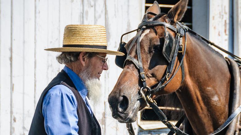 Amish man and horse