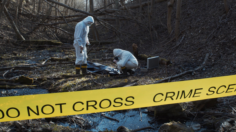 Forensic team in forest