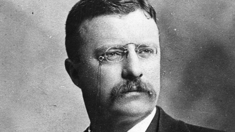 President Teddy Roosevelt portrait