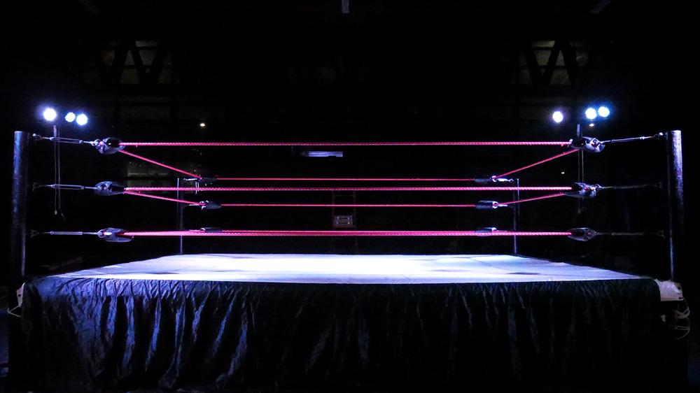 Stock image of wrestling ring
