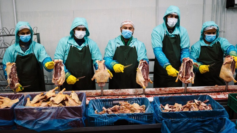 chicken processing employees