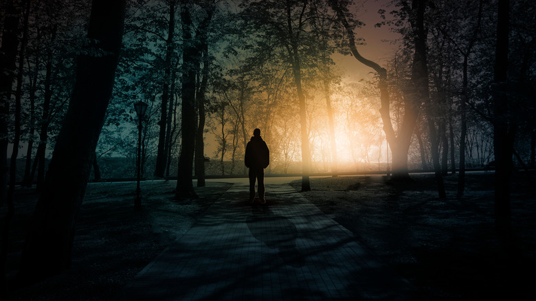 eerie silhouette of a man in a forest