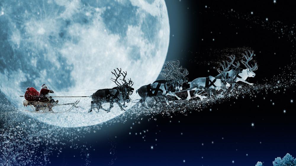 Santa and his reindeer