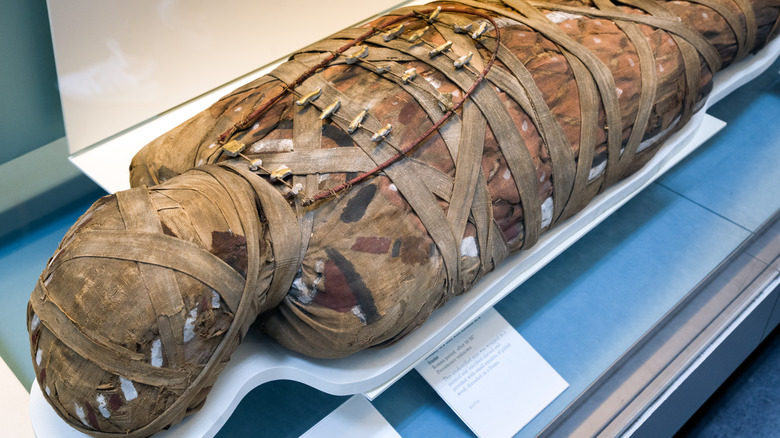 ancient egypt mummy in coffin