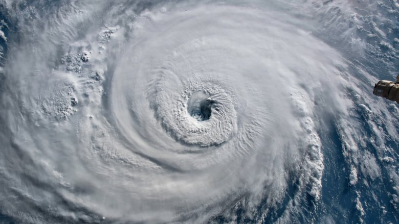 Hurricane, Cyclone, Typhoon