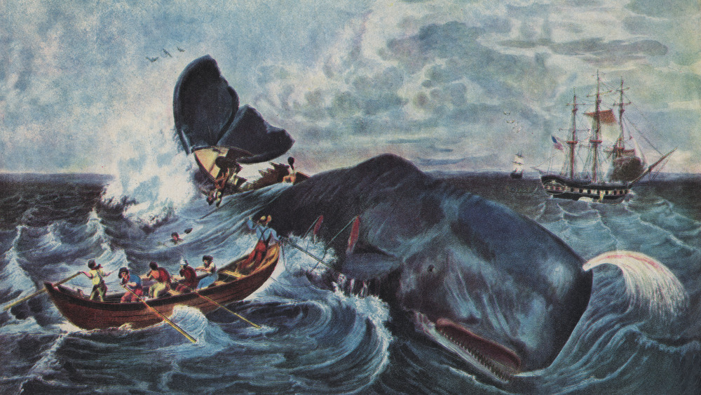 19th century whalers capturing a whale