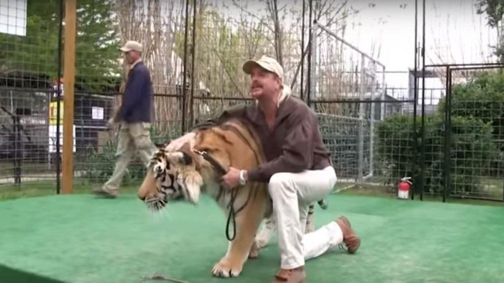 Tiger King 1