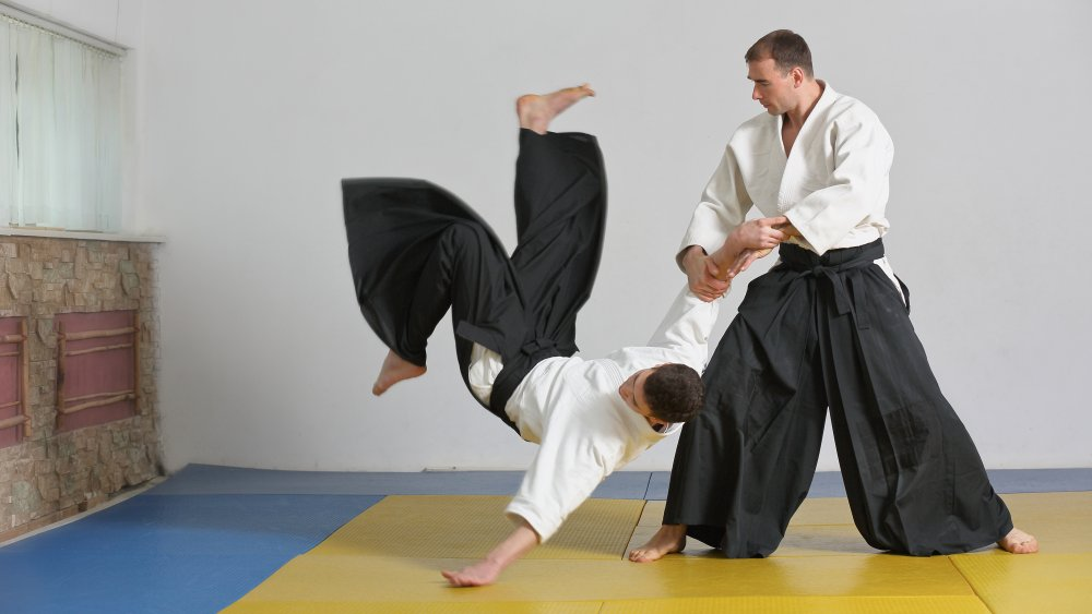 Aikido practitioners