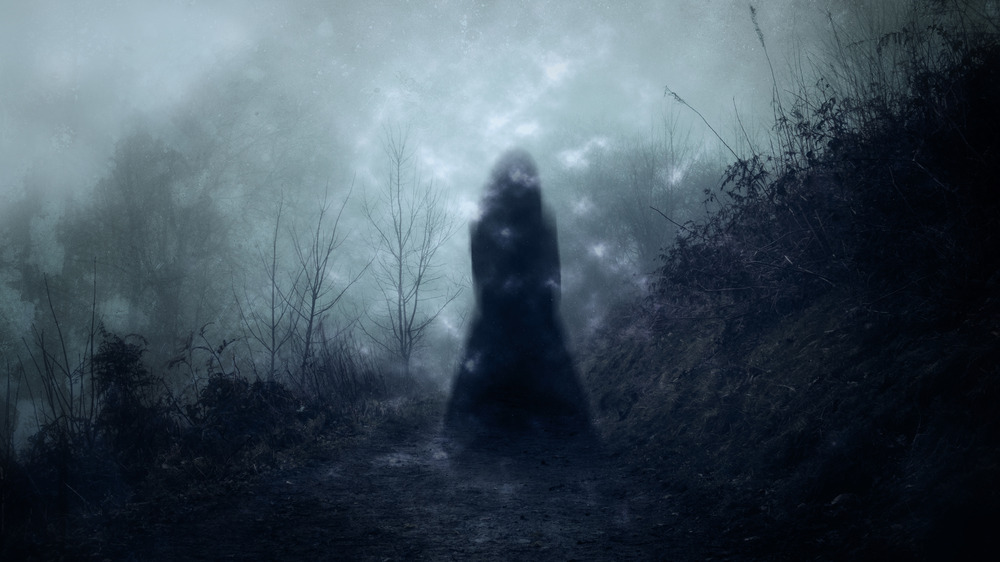 Clementine Barnabet shadow