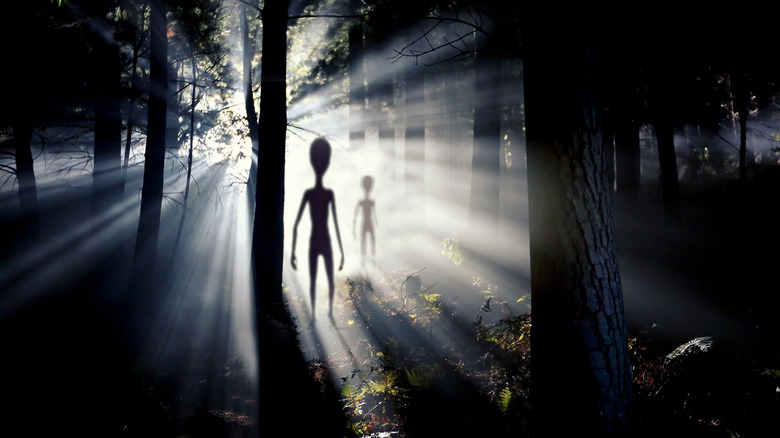 aliens invading forest