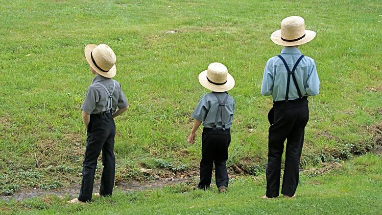 Amish boys on a field