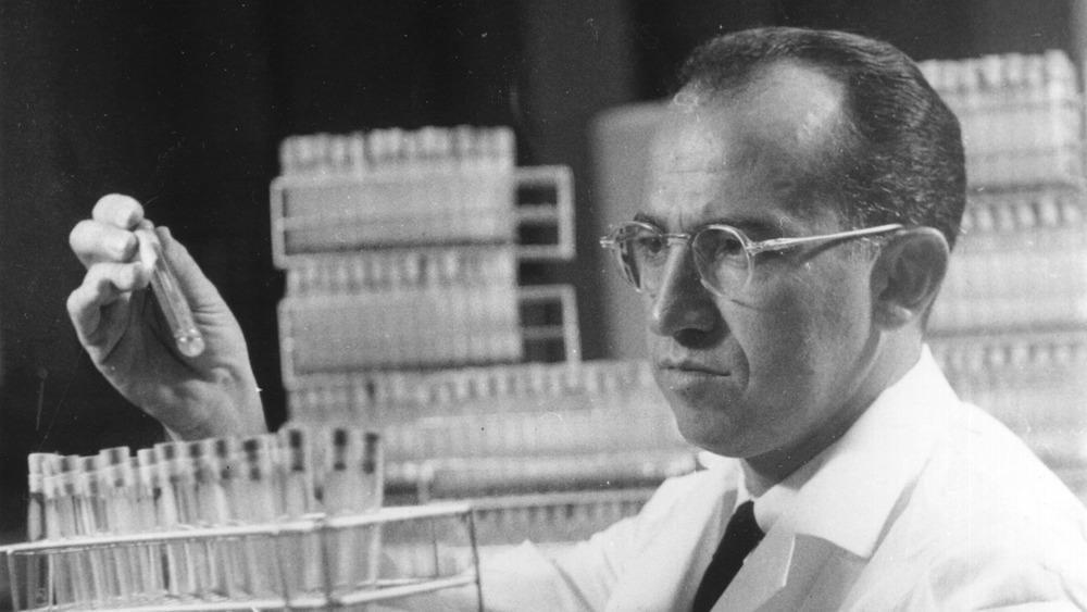 Salk examines test tube
