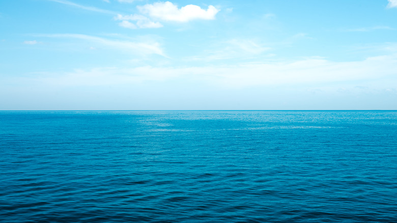 The ocean and the horizon