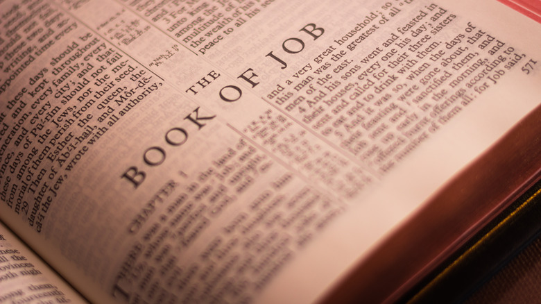 The Book of Job in the Bible